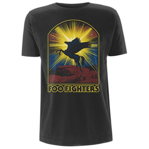 Foo Fighters - Winged Horse