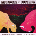 Shook Ones - Slaughter of the insole