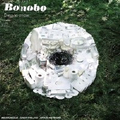 Bonobo - Days to come - 2xlp