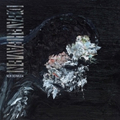 Deafheaven - New Bermuda (reguläres Cover) - 2xlp