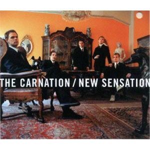 Carnation, The - New sensation