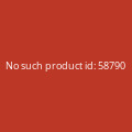 Modern Life Is War - Dead Ramones (Zipper) - L