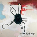 Nine Black Alps - Everything Is - cd