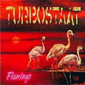 Turbostaat - Flamingo - lp