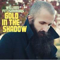 William Fitzsimmons - Gold in the shadow - lp + cd