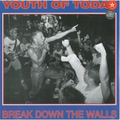 Youth Of Today - Break down the Walls - col. lp