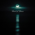 Band of Horses - Cease to begin col lp