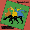 Parquet Courts - Wide Awake lp