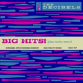 Decibels, The - Big Hits! (plus 12 more!) lp
