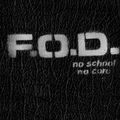 Flag Of Democracy - No School No Core - lp