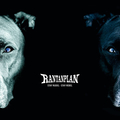 Rantanplan - Stay Rudel - Stay Rebel digi-cd