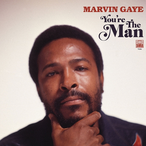 Marvin Gaye - Youre the Man