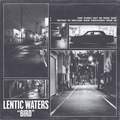 Lentic Waters - Bird - col lp