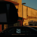 TaxiWars - Artificial Horizon - lp
