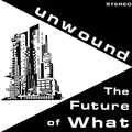 Unwound - The Future of What - lp